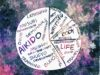 Blog Topic Pie Chart - Aikido, Writing, Body, and Life