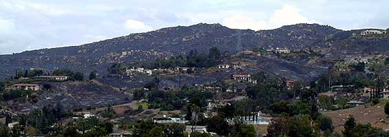 Shadow Mountain after the Cedar Fire in 2003