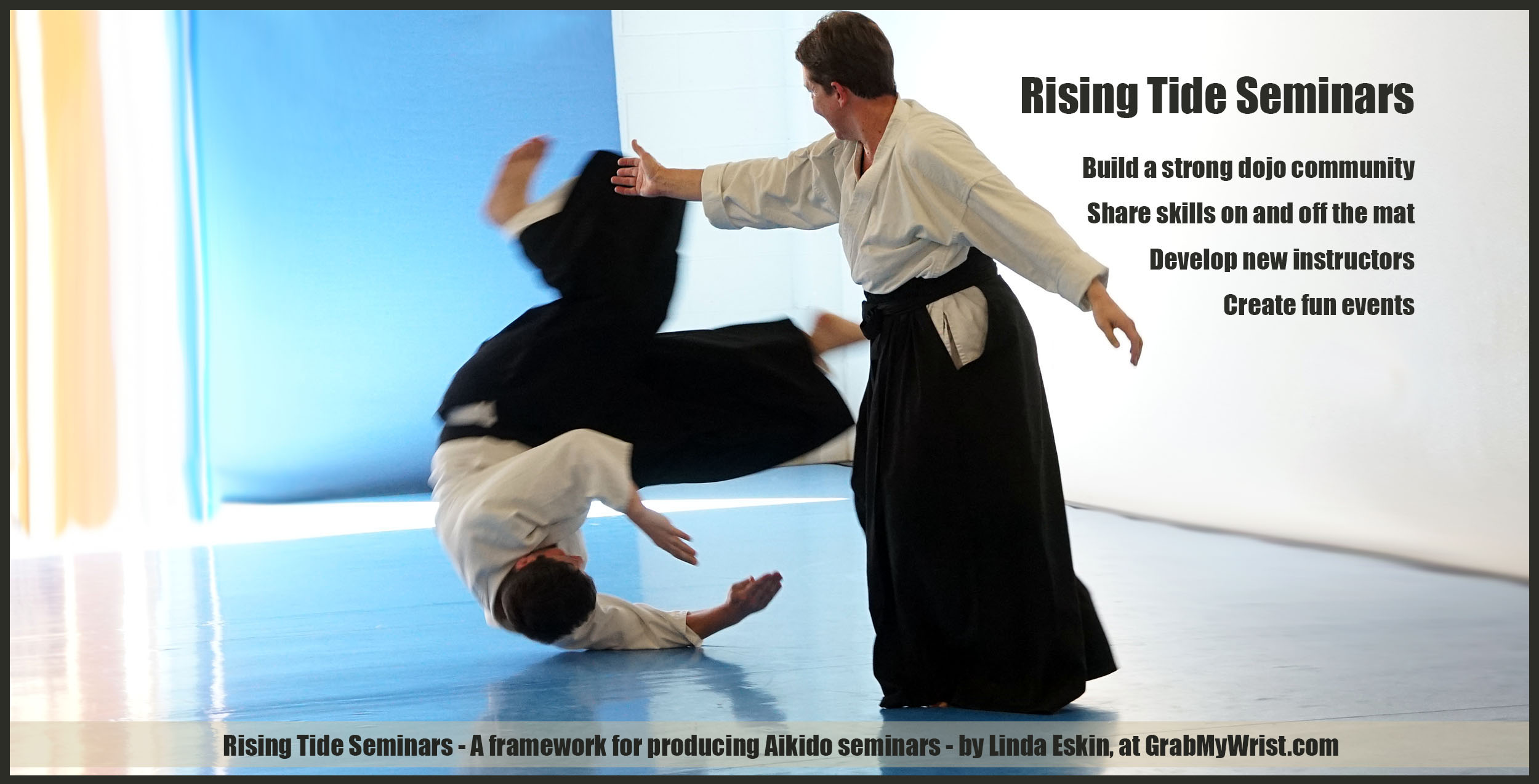Rising Tide Seminars - A Framework for Growing Together by Producing Aikido Seminars