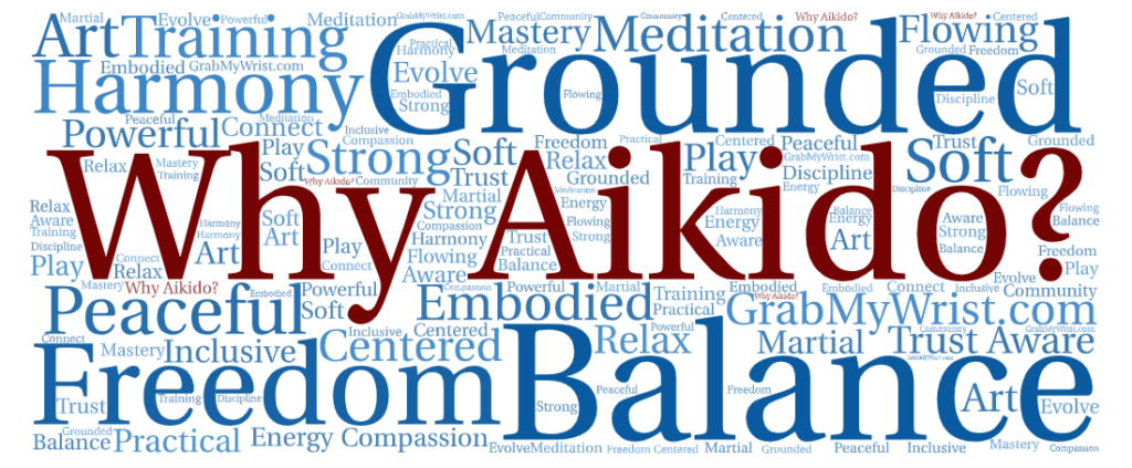 Why Aikido - Word Cloud